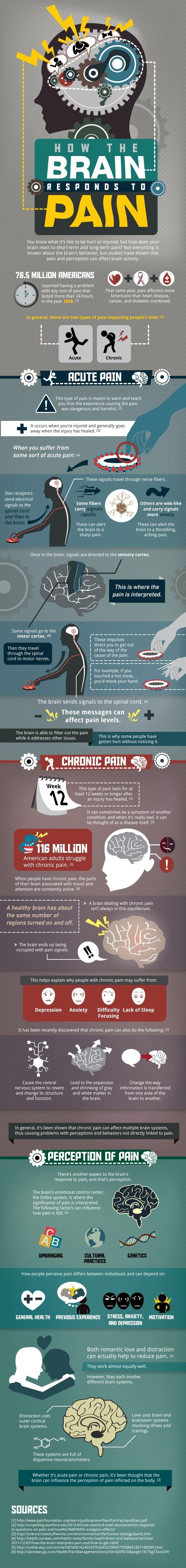 How The Brain Responds To Pain