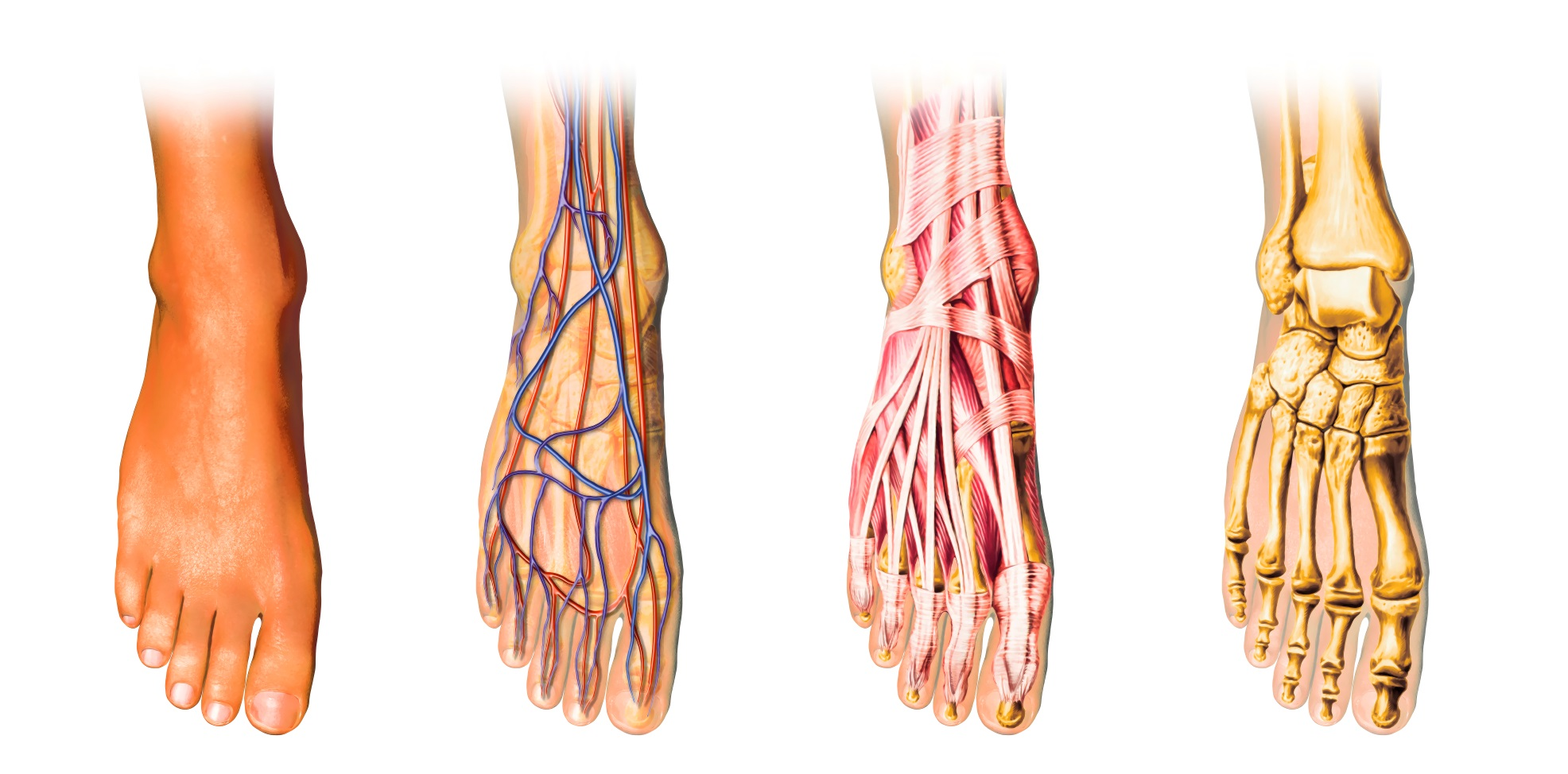 Foot Pain Dc Injury Clinic